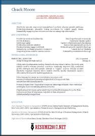 Professional Resume Template 2017