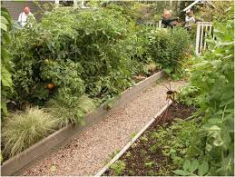 Small Picture Small Backyard Vegetable Garden Design Ideas Tag Splendid