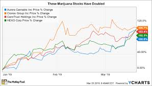 These Marijuana Stocks Have Doubled So Far In 2019 The