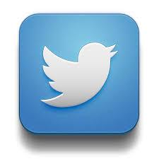 Bildergebnis für twitter logo download