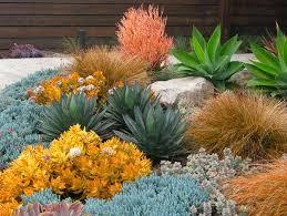 garden ideas landscape ideas drought tolerant full sun part sun mediterranean