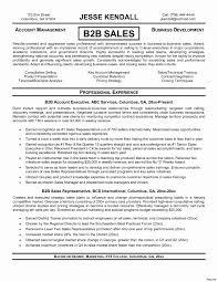 Sample Sales Representative Resume Amazing Sales Representative Resume Sample Sle Modern Verizon 15