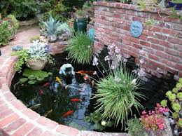 Small Picture 43 best koi images on Pinterest Pond ideas Backyard ponds and