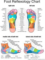Reflexology And Cancer Sciencedirect