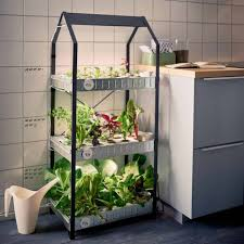 indoor gardening how to grow food inside