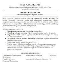 Gallery Of Resume Professional Summary Sales Professional Summary