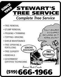 Service Advertisement E English Lab Short Functional Text Advertisement