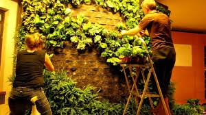 how to make a vertical garden. diy how to making of patrick blanc style green wall vertical garden on vimeo make a d
