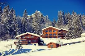 The Best Ski Chalet Services In Switzerland Assistant Concierge .