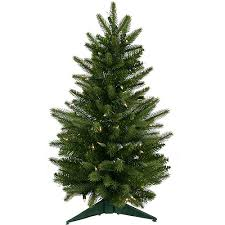 Kingswood Fir Pencil Christmas Tree