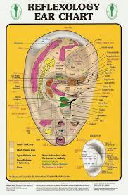 Reflexology Foot Chart Reflexology Interactive Foot Chart