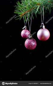 Purple Christmas Card Purple Christmas Balls Green Spruce Branch Black Background