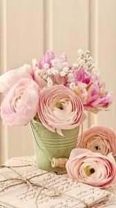 love vine roses iphone 6 plus wallpapers flowers love iphone 6 1080x1920
