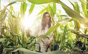Pictures Katy Perry Foliage Music Girls Fields Celebrities 1920x1200