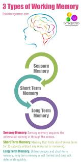 best ideas about working memory executive 17 best ideas about working memory executive functioning brain games and memory games