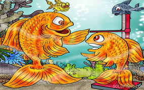 Fantail Goldfish Growth Chart Help Your Goldfish Grow Goldfish Size How Big Do They Get
