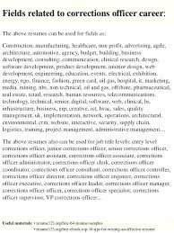 Assistant Probation Officer Sample Resume Stunning Resume For Correctional Officer Parole Probation Officer Cover