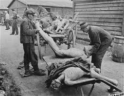 Resultado de imagen para imagenes farsa holocausto