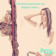 Roy Citations Inspirantes