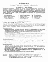 Information Technology Professional Resume Examples It Resume Example Luxury Information Technology Resume Examples 22