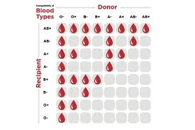 Blood Type Donor Compatibility Chart Knowing Your Blood Type Is Vital Local News The Telegram
