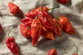 Scorpion Pepper Scoville Chart Ghost Pepper Vs Jalapeño Pepperscale Showdown Pepperscale