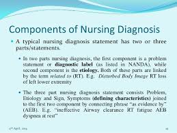 nursing essay on nursing process 17th 2014 18 19 components of nursing