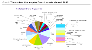 improving your knowledge of the international job market source survey of french expats service of french nationals overseas and consular affairs dfae ministry of foreign affairs 2013 international