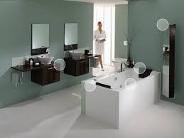 spa paint colorsSpa Paint Colors For Bathroom  Facemasrecom