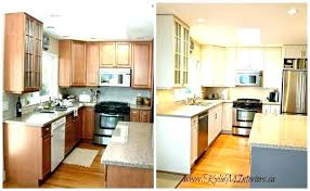 painting kitchen cabinet ideas repainting kitchen cabinets ideas repainting kitchen cabinet ideas catchy painting kitchen cabinets