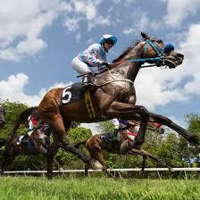 Exacta Box Chart How To Box An Exacta In Horse Race Betting