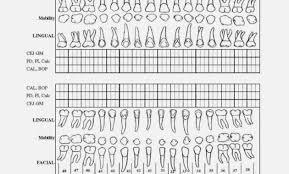 Dental Chart Form Juve Cenitdelacabrera Chart Information