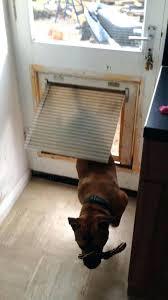 diy automatic dog door homemade dog door comments dog flap screen door diy automatic pet door