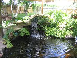 garden landscaping: Fantastic Waterfall And Natural Plants Around Pool Like  Pond Inside Backyard Pond Pictures