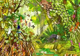 Kinderkamer Jungle Behang Modern Echt Iets Leuks In Je Kinderkamer
