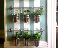 Indoor Kitchen Gardens Hanging Indoor Herb Garden Gardens Kitchen Herb Gardens And