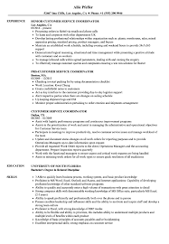 Resume Customer Service Sample Customer Service Coordinator Resume Samples Velvet Jobs 28