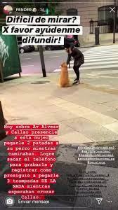 ATENCIÓN CASO DE MALTRATO ANIMAL! ESTO... - Amo y respeto a los animales |  Facebook
