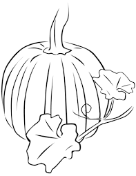Small Picture Pumpkin with Leaves coloring page Free Printable Coloring Pages