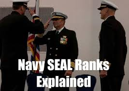Navy Seal Ranking Chart Us Navy Seals Rank Structure Insignia And Pay Updated 2019