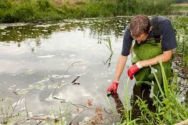 Environmental Scientist | Eco Canada