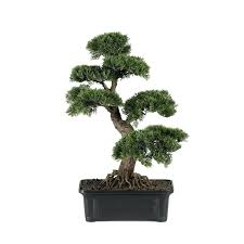 bonsai tree for office. Artificial Bonsai Trees Australia New Featured Tree For Office T