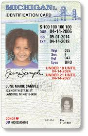 The Id Of Offers Michigan Office Secretary State's - State Facebook