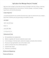 director of finance resume finance resume template rekomend me