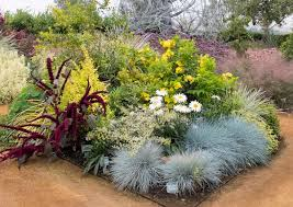 Small Picture Add a Touch of Sunshine to Your Water Wise Garden Sunset Western