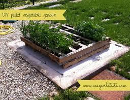 diy wood pallet vegetable garden