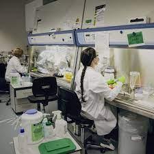 How Pfizer Partner BioNTech Became a Leader in Coronavirus Vaccine Race -  WSJ