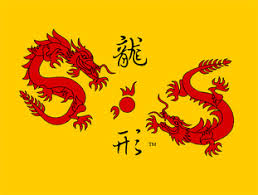 Shaolin Kung Fu Institute About Us