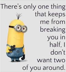 Funniest Quotes Ever Extraordinary Best Ever 48 Funny Minions Quotes And Picture 48 Quotations And