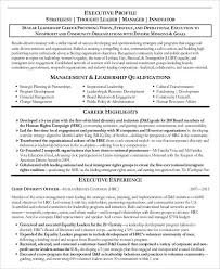 senior executive resume 25 free executive resume templates pdf doc free premium